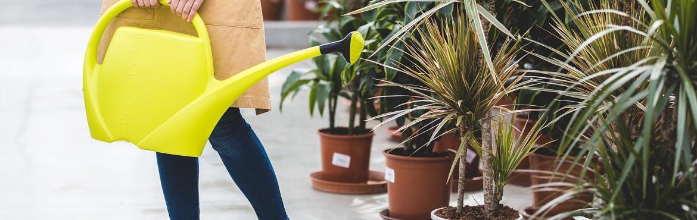 Automatische Bewässerung für Kübelpflanzen