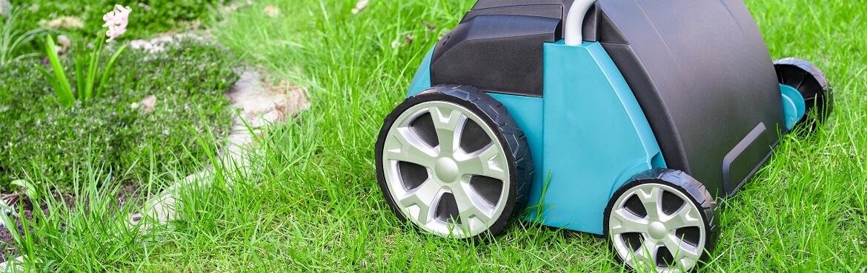 Erst Rasen mähen oder vertikutieren