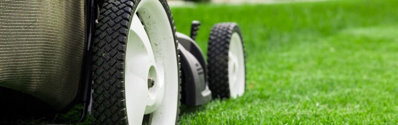 Richtig Rasen mähen